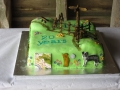 The 20th Anniversary of PV group celebration cake