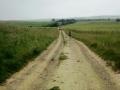 28/06/14 Views of the Ridgeway on the way to Avebury