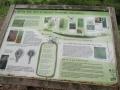 Keston Bog - CD's landscape