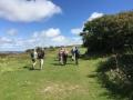 Isle of Wight 11 mile walk